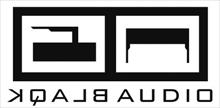SUPERBALL MUSIC is pleased to announce the signing of electronic super duo BLAQK AUDIO